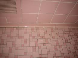 Regrout Bathroom Tile Floor by Pink And Grey Bathroom Including Square Ceramic Glossy Bathtub