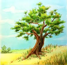 Drawn tree color 5