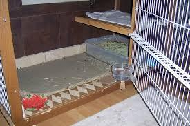 Fresh Drop Bathroom Odor Preventor Ingredients by Odor Free Home Rabbits Indoors
