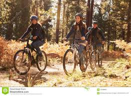 Download Group Of Smiling Friends Riding Bikes In A Forest Side View Stock Image
