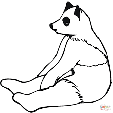 Dibujo De Panda Joven Sentado Para Colorear Dibujos Para