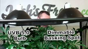 Basking Lamp For Chameleon by Chameleon Setup Youtube