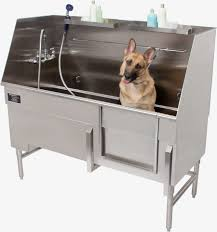 Stainless Steel Fish Cleaning Station With Sink by Forever Stainless Steel