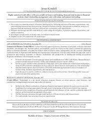 Credit Manager Resume Collection Of Solutions Sample For With Reference Samples