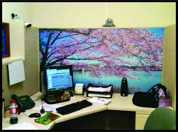 fice Home Design Awesome Cubicle Decor Mesmerizing