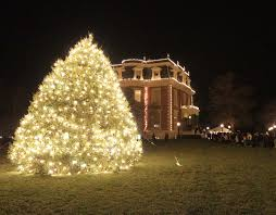 Christmas Tree Species Canada by Governor U0027s Mansion Christmas Tree Search Missouri Department Of