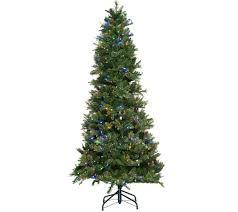 Best Artificial Christmas Tree Type by Christmas Trees U2014 Qvc Com