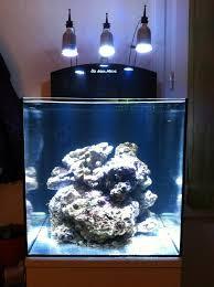 aquarium nano eau de mer nano aquariophilie le nano marin d elo