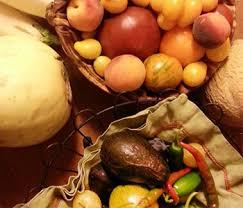 Best Pumpkin Apple Picking Long Island Ny by Kelder U0027s Farm