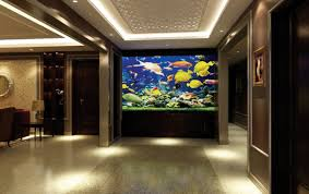 Amazing Home Aquarium Ideas Contemporary - Best Idea Home Design ... Fish Tank Designs Pictures For Modern Home Decor Decoration Transform The Way Your Looks Using A Tank Stunning For Images Amazing House Living Room Fish On Budget Contemporary In Contemporary Tanks Nuraniorg Office Design Sale How To Aquarium In Photo Design Aquarium Pinterest Living Room Inspiring Paint Color New At Astonishing Simple Best Beautiful Coral Ideas Interior Stylish Ding Table Luxury