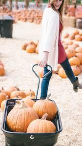 Pumpkin Patch Farm Katy Tx by 55 Best Halloween Images On Pinterest