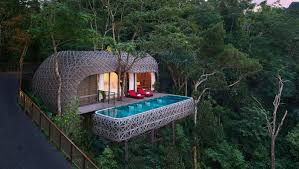 100 Photos Of Pool Houses 7 Coolest Tree In Thailand That You Can Sleep In