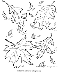 Free Leaf Coloring Page