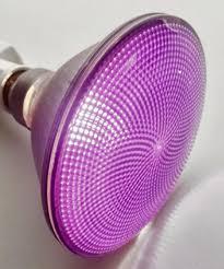 light bulb purple flood light bulb light bulb black light flood
