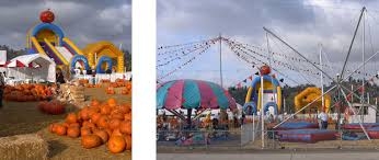 Bates Nut Farm Pumpkin Patch 2014 by 2015 North County Pumpkin Patches Complete Guide