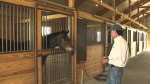 Brad's Horse Barn - YouTube Ameristall Horse Barns More Than A Daydream Front View Of The Rancho De Los Arboles Barn Built By 183 Best Images About Barns On Pinterest Stables Tack Rooms And Twin Creek Farms Property Near Austin Inside 2 11 14 Backyard Outdoor Goods Designs Options American Barncrafters Custom Steel Youtube Metal Pa Run In Sheds For Horses House