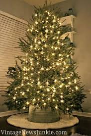 Christmas Tree Preservative Recipe by Gold Christmas Trees Yellow Christmas Trees Colored Christmas