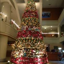 Thumb Size Of Perfect Tall Skinny Tree Luxury Our Ceilings Are So
