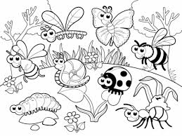Stick Insect Coloring Page Printable Pages Design