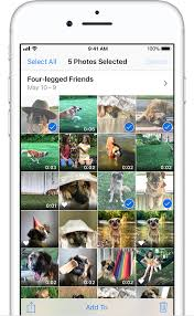 Delete photos on your iPhone iPad and iPod touch Apple Support