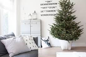 Aspirin Keep Christmas Trees Alive by How To Keep Your Real Christmas Tree Fresh Houzz