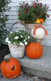 Decorative Pumpkins For Perfect Autumn Appeal