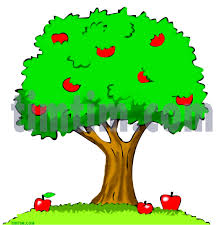 Color drawing of an apple tree with apples on the branches and a few fallen ripe apples on the ground