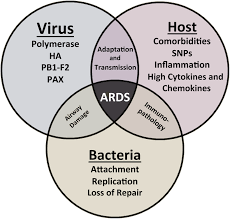 Asymptomatic Viral Shedding Influenza by The Role Of Viral Host And Secondary Bacterial Factors In