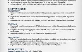 Standart For Welder Functional Resume Sample