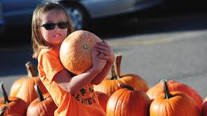 Fargo Pumpkin Patch by Pumpkin Patch Kid Brainerd Dispatch