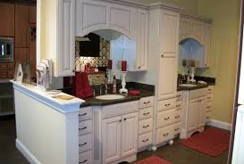 Insl X Cabinet Coat Colors by Kitchen Cabinets To Go Pictures Of Cabinets To Go Kitchens 22