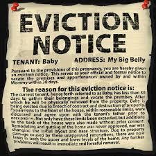 notice siege auto baby go 7 baby eviction notice shannon garcia shannon