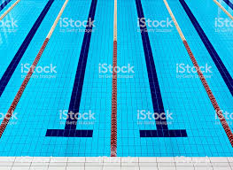 Empty Olympic Swimming Pool Royalty Free Stock Photo