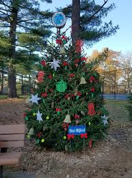 Christmas Tree Pickup Baltimore County by The Borough Of New Milford Nj Home Page