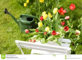 Spring Garden Motif Stock Photo. Image Of Flowers, Green - 34779510 Spring Home Garden Show Madison Turners Seattle Spring Home And Garden Show Backyard Escapes Win Tickets To The Southern And With Fresh Beautiful Gardens Back To Relax In My Beautiful Boise Lovely Canyon County Page G1 Moulton Advtiser Scenes From The Timonium Baltimore Sun Photos Wwwgocarolinascom Michelle Obama On Better Homes Cover Is Rare Milestone San Antonio Design Ideas Homegallery Allee Landscape Design