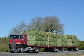 Bradley's Blog : Conventional And Cabover Hay Hauler Trucks Hay For Sale In Boon Michigan Boonville Map Outstanding Dreams Alpaca Farm Phil Liske Straw Richs Cnection Peterbilt 379 At Truckin Kids 2013 Youtube Bruckners Bruckner Truck Sales Lorry Stock Photos Images Alamy Mitsubishi Raider Wikipedia For Lubbock Tx Freightliner Western Star Barmedman Motors Cars Sale In Riverina New South Wales On Economy Mfg Dennis Farms Equipment Auction The Wendt Group Inc Land And