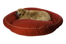 Top Rated Orthopedic Dog Beds by Dog Beds You U0027ll Love Wayfair
