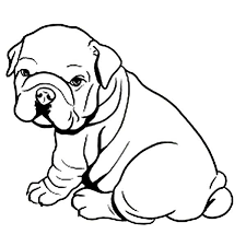 Pin English Bulldog Clipart Coloring Page 11