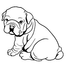 Pin English Bulldog Clipart Coloring Page 11