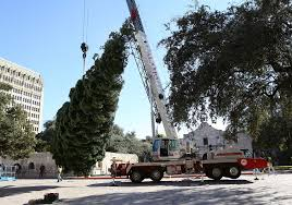 Silver Tip Christmas Tree Los Angeles by Photos 55 Foot Christmas Tree Erected At Alamo Plaza San