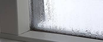 thermopenfenster sind innen nass