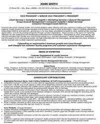 A Resume Template For Senior Vice President
