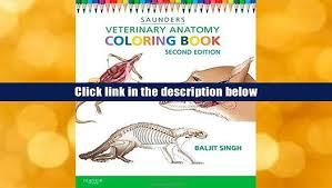 Veterinary Anatomy Coloring Book By Saunders Download Pdf E For
