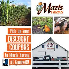 Murray Farms Bakersfield Pumpkin Patch by Shop Online Goodwill