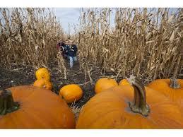 Fargo Moorhead Pumpkin Patches by Fall Activities Official North Dakota Travel U0026 Tourism Guide