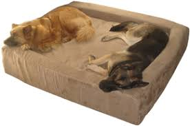 Memory Foam Dog Beds and Dog Furniture by Max fort
