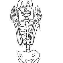 Double Jointed Skeleton Scary Full Frontal 01 Ax9