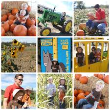 Pumpkin Patch Power Rd Mesa Az by Fun Fall Festivals U0026 Pumpkin Patches Around Arizona Travel Tuesday