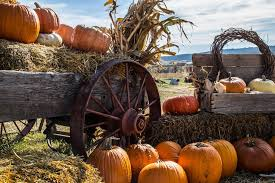 Nearby Pumpkin Patches by Pumpkin Patches Perfect For Family Fun This Fall Kerley Family Homes