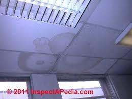 drop ceiling tiles for bathroom thedancingparent